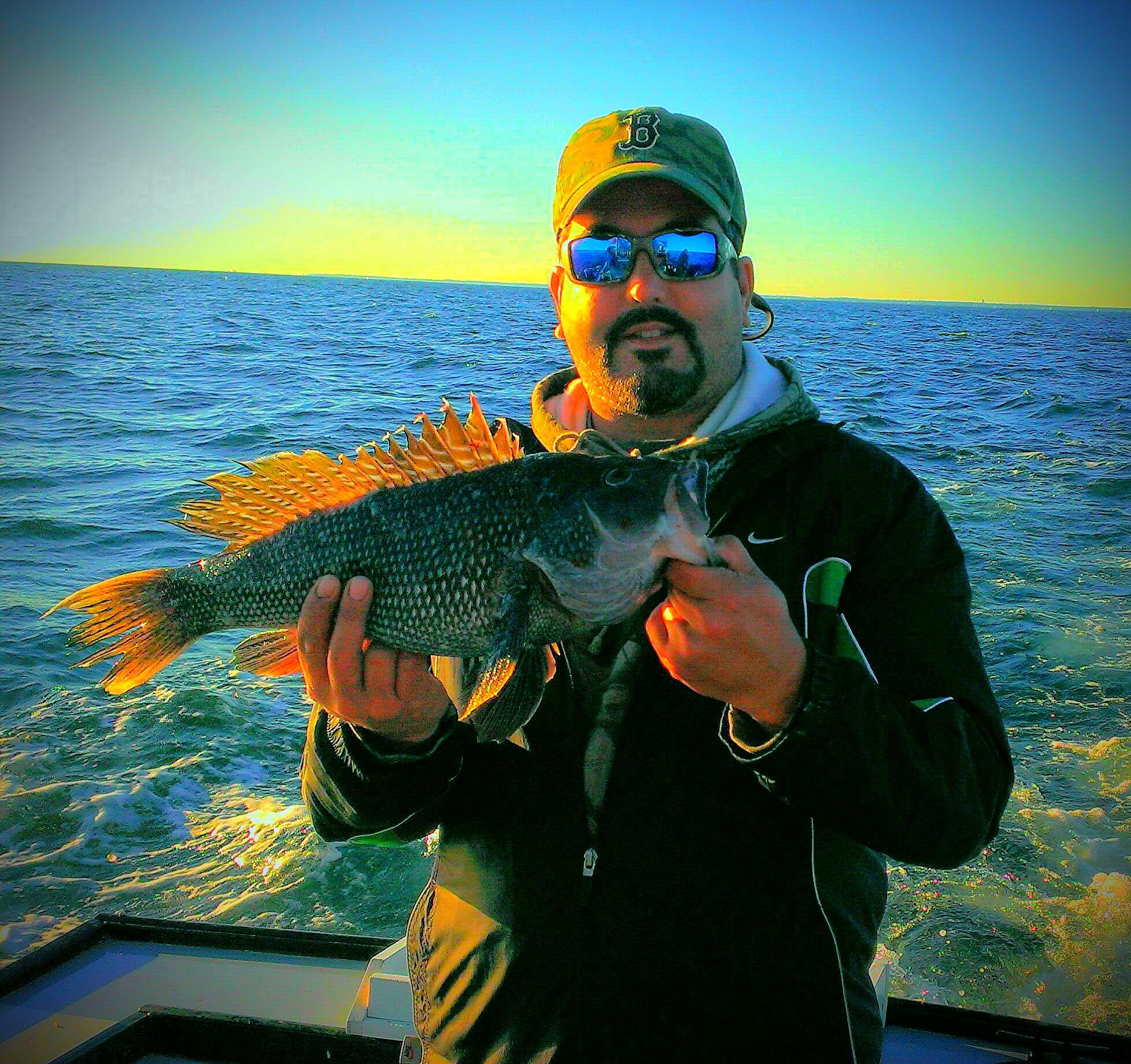 Fall black sea bass fishing capt jim 39 s charters llc for Fishing charters falmouth ma